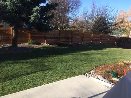 Bellaroo Denver Fence Company Team Dave Logan